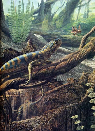 Đây là nơi duy nhất lưu trữ hóa thạch nguyên vẹn của các loài sinh vật sống cách đây khoảng 300 triệu năm. Ảnh: jogginsfossilcliffs.