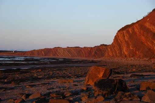 Vách đá Joggins được chọn là di sản thế giới bởi nó là minh chứng về lịch sử Trái đất. Ảnh: jogginsfossilcliffs.