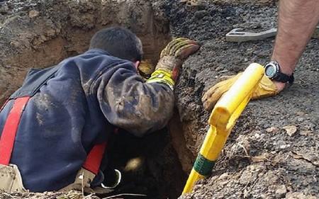 Các nhân viên cứu hộ đã mất 3 giờ đào bới để giải thoát chú chó bị chôn vùi dưới đất đá