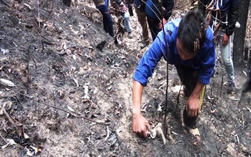 Đối tượng Sử đang diễn tả lại hành vi đốt rừng. (Ảnh: VOV)