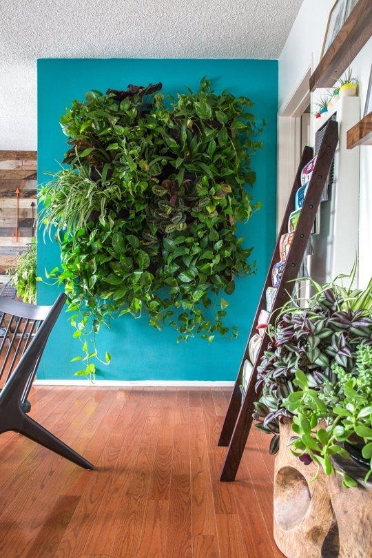 Mảng tường trống trong căn hộ này được tận dụng để cây cối phát triển một cách tự nhiên.