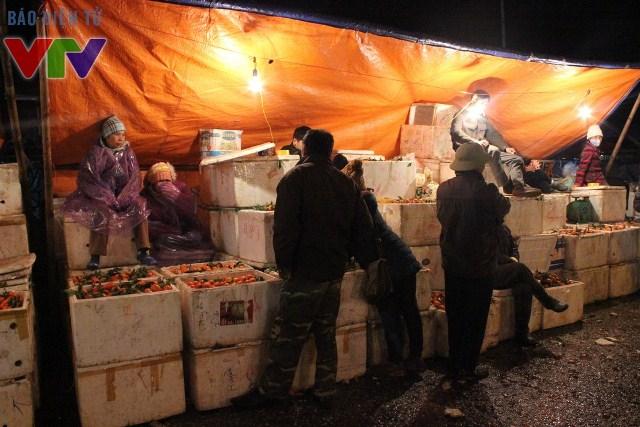 Cam canh được bày biện rất nhiều tại chợ Long Biên