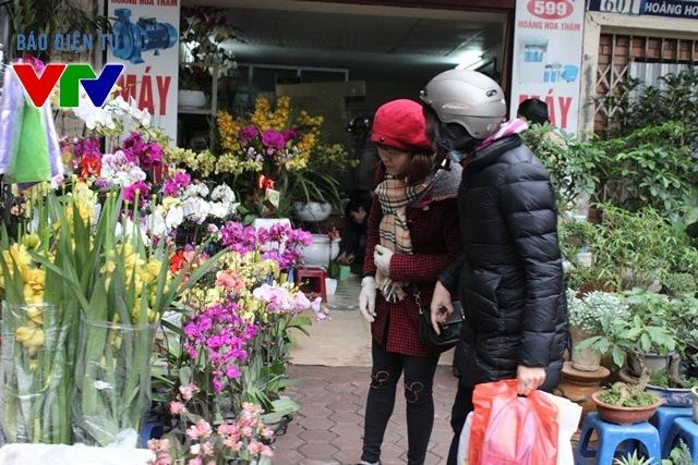 Con đường Hoàng Hoa Thám rực rỡ muôn màu hoa đua nở dịp Tết