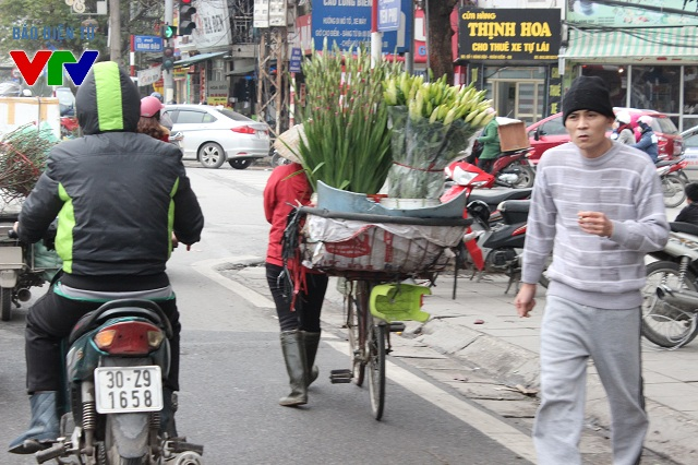 Sắc hoa nở dịp Tết đẹp dịu dàng trên những chiếc xe dạo trên tại đường Trần Nhật Duật