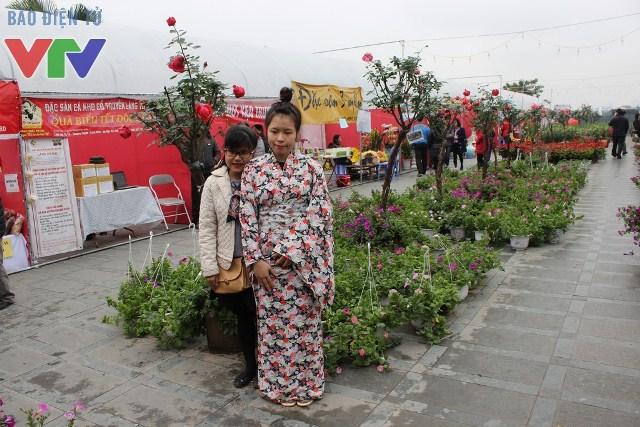 Nhiều bạn trẻ mặc trang phục kimono và chụp ảnh tại lễ hội