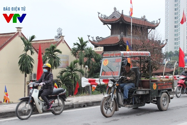 Xe chở đào từ chợ hoa Quảng Bá về nhà khách mua