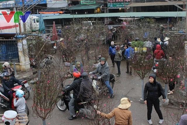 Chợ đào tại chợ hoa Quảng Bá những ngày giáp Tết luôn nhộn nhịp
