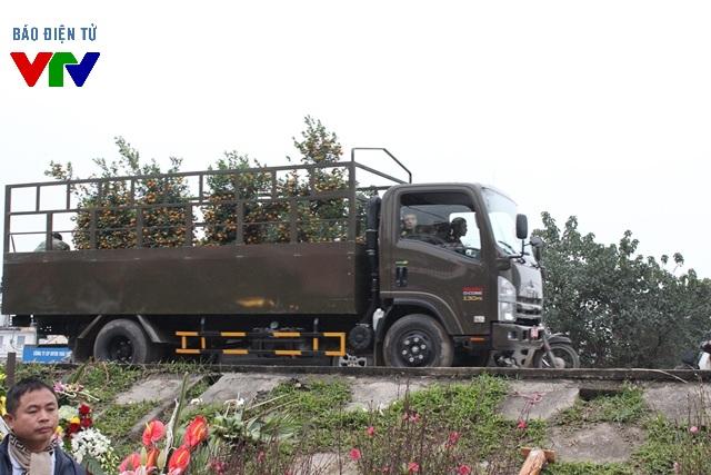 Từng xe tải chở quất ra vào khu chợ cung ứng cho nhu cầu người dân