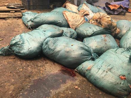 Số lượng mỡ thối bốc mùi được đóng trong các bao tải (Ảnh: nld.com.vn)