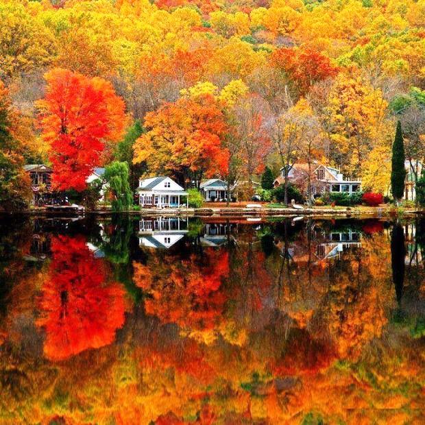 Mùa thu vàng ở New Jersey, Mỹ