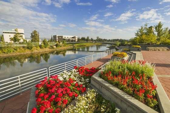 Những bông hoa mùa hè tại Vườn Golden Heart ở trung tâm thành phố Fairbanks trong tiết hạ chí, khi Mặt trời không bao giờ ngủ.