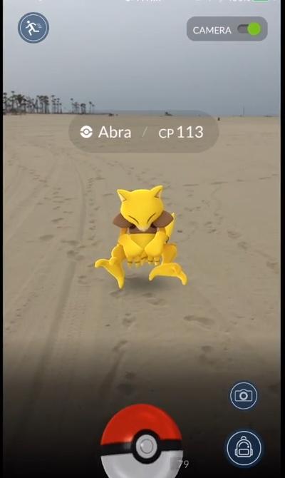 Pokémon hoang dã sẽ hiển thị trên giao diện camera của trò chơi