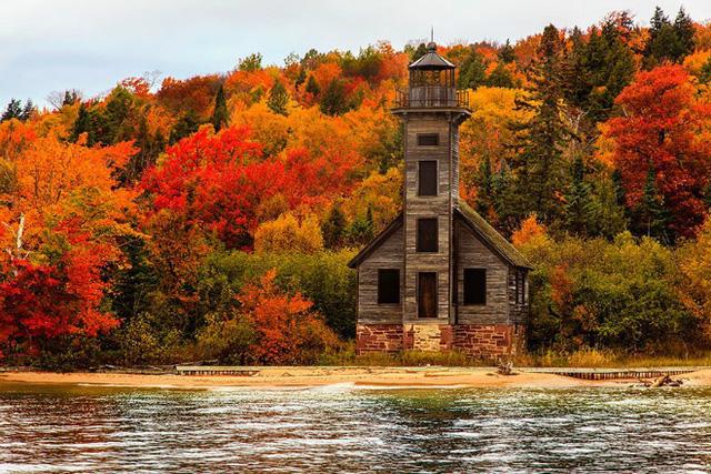 Bờ sông ở Michigan (Mỹ) càng thơ mộng với những tán lá phong đỏ ửng đầy sức sống