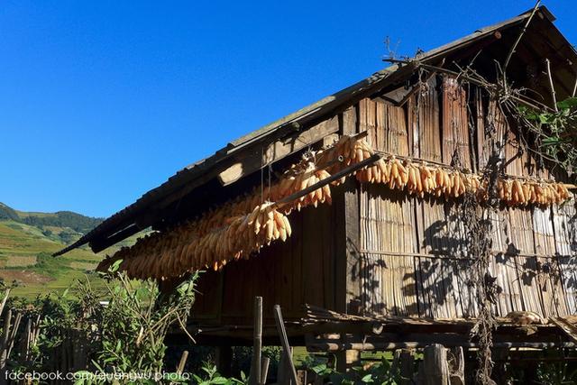 Người Mông ở đây có những nét rất đặc sắc như nhà có sàn, cột và khung bằng gỗ, tường <span class=