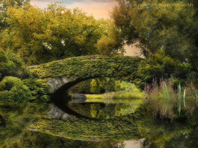 Cây cầu nổi tiếng Gapstow soi mình xuống làn nước trong veo những ngày hè