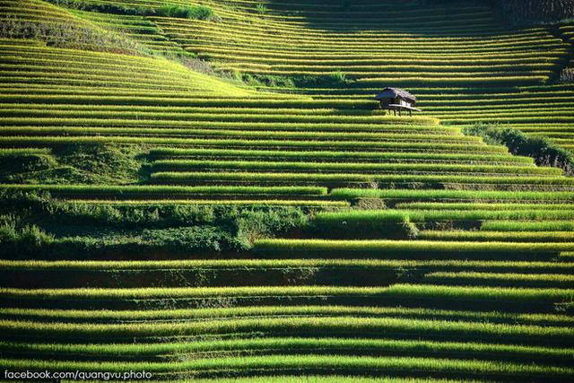 Nằm dưới chân dãy Hoàng Liên Sơn, Mù Cang Chải hiện ra trong hành trình đến với Yên Bái là hình ảnh những bản làng thanh bình bên ruộng bậc thang đang mùa lúa chín.