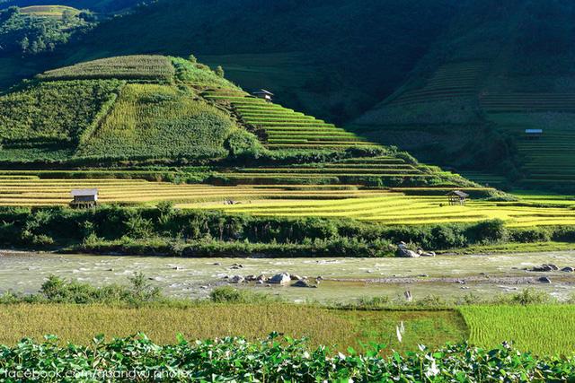 Văn hóa canh tác ruộng bậc thang của đồng bào dân tộc Mông ở La Pán Tẩn, Chế Cu Nha, Dế Xu Phình đã biến tên Mù Cang Chải (tức <span class=
