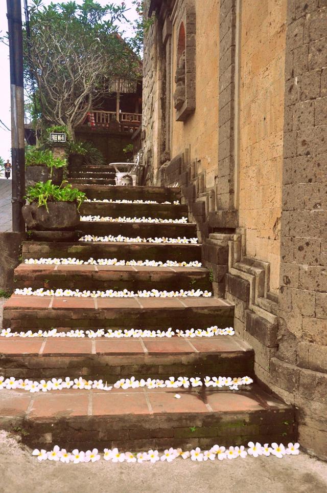 Lối đi trải đầy hoa đại, loài hoa thường thấy gần những khu đền đài.