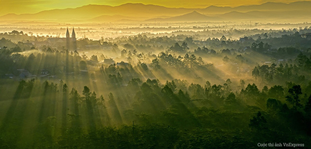 Nếu đã từng đến với mảnh đất Đà Lạt, ngoài vẻ đẹp rực rỡ của ngàn hoa, du khách sẽ không khỏi ngạc nhiên về khoảng khắc nắng mai ngập tràn trên những rừng thông. (Tác giả: Thái Bình Minh)