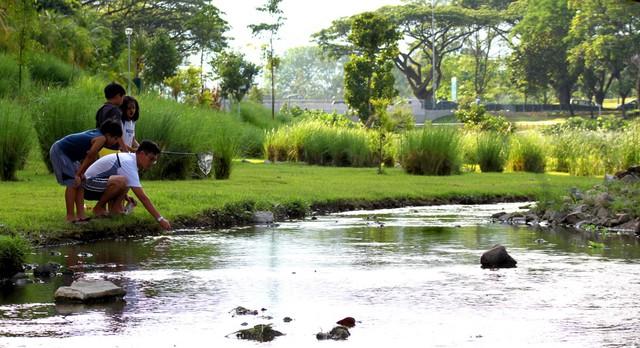 Singapore - Thành phố trong vườn - Ảnh 1.