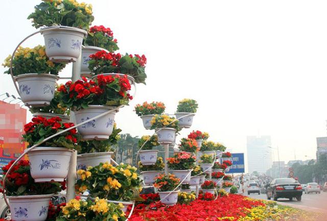 Những chậu hoa rực rỡđược trang trí bắt mắt trên khắp các nẻo đường Hà Nội (Ảnh: Phụ nữ today)