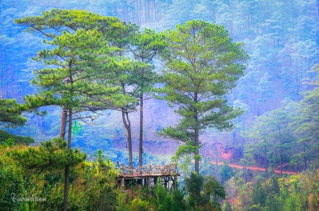 ... hay ngồi làng Cù Lần yên bình nổi tiếng. Chính vì những điểm đến hấp dẫn cùng khí hậu dịu mát như vậy mà nơi đây còn được gọi là xứ sở mộng mơ hay thiên đường hoa.