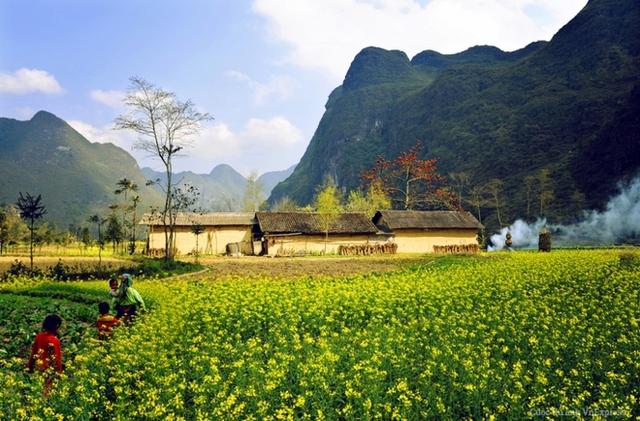Những mùa hoa miền núi phía Bắc Việt Nam đã làm say lòng biết bao du khách trong và ngoài nước. Một trong số những điểm đến đẹp nhất để thưởng ngoạn vẻ đẹp tự nhiên này chính là Hà Giang, mảnh đất địa đầu tổ quốc. (Tác giả: Phạm Thị Thu Hà)