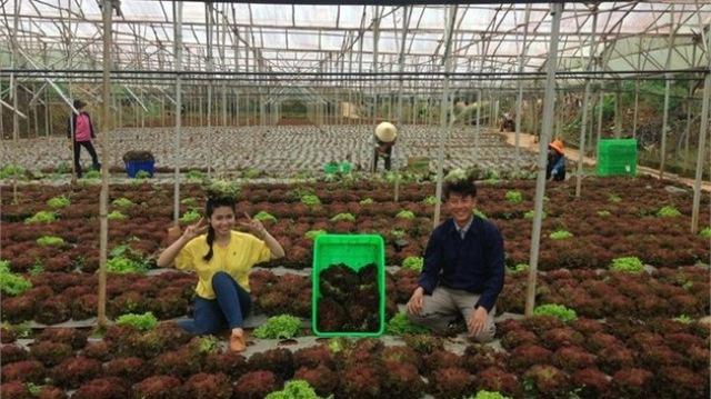 Chương trình Sinh ra từ làng gặp gỡ anh chàng Mai Văn Khẩn, người nông dân có thu nhập 1,5 - 3 tỷ/năm nhờ trồng rau