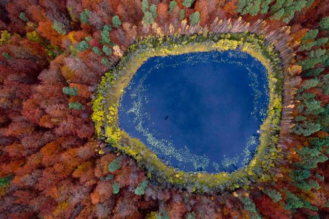 Một chiếc hồ trong một khu rừng ở Kashubia, Ba Lan. (Ảnh: Kacper Kowalski—Panos Pictures)