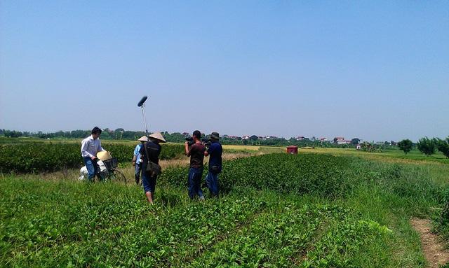 Anh Nicholas Shell, người Mỹ trải nghiệm tại làng trồng thuốc nam Nghĩa Trai, Hưng Yên trong chương trình Vietnam Discovery.