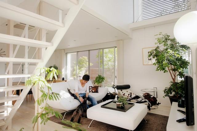 Không gian bên trong ngôi nhà không thực sự rộng rãi nhưng mang đến cho người ta cảm giác trong lành, thoáng đãng nhờ tiếp xúc với nhiều ánh nắng tự nhiên và có sự điểm xuyết của cây xanh
