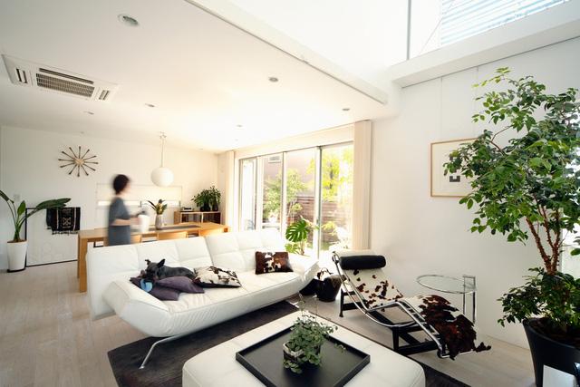 Gam màu chủ đạo của nội thất trong căn nhà là màu trắng
