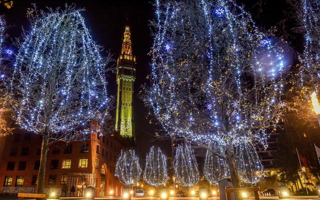 Cây trên phố tại Lille, Pháp cũng được chăng đèn nổi bật để chào đón Giáng sinh.
