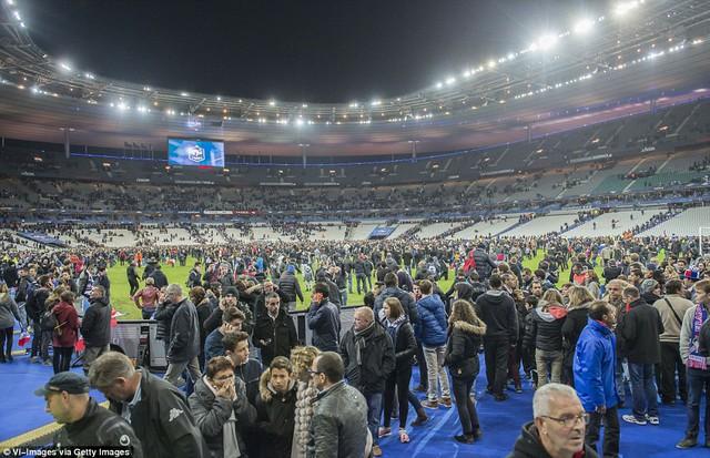 Khán giả trên sân Stade de France chạy xuống sân do nguy cơ khủng bố trên khán đài