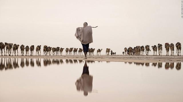 Cánh đồng muối ở Ethiopia do nhiếp ảnh gia Ba Lan Joel Santos chụp.