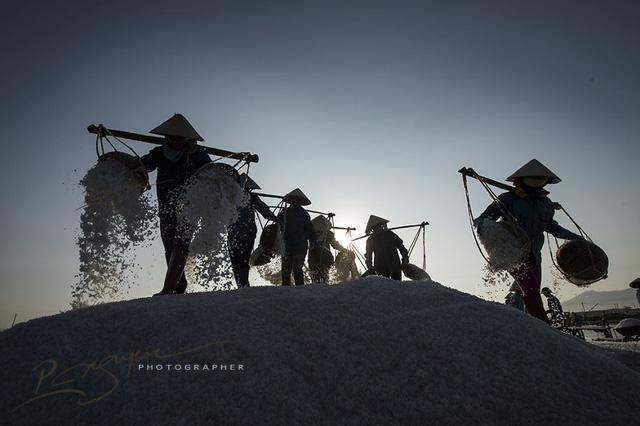 Thu hoạch muối ở Khánh Hòa