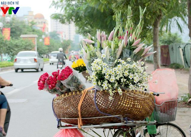 Sau khi được thu hoạch tại vườn, cúc hoa mi sẽ được chuyển trên những chiếc xe đạp để len lỏi trên các con phố Thủ đô và được bày bán cùng các loài hoa khác.