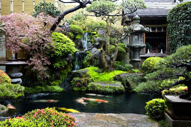 Yên bình khu vườn sau nhà ở Nhật Bản.