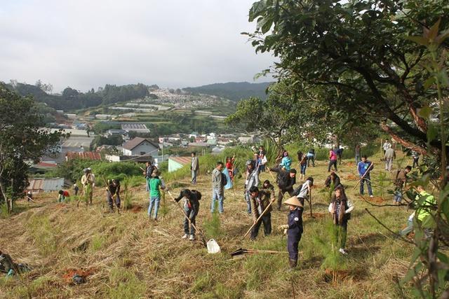 Người dân tích cực tham gia trồng 2000 cây thông. (Ảnh: VnExpress).