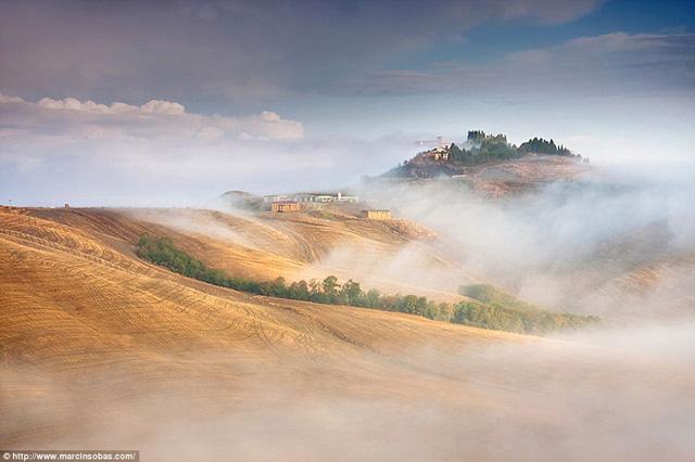 Những cánh đồng mùa đông ở Tuscany, Italy.