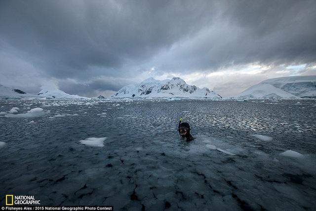 Bức ảnh Not even cold của tác giả Fisheyes Alex.