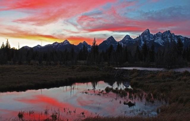 Schwabacher Landing, công viên quốc gia Grand Teton, bang Wyoming (Mỹ) - Ảnh: Christina Adele Warburg.