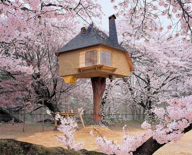 Được bao quanh bởi những cây hoa anh đào tuyệt đẹp, Teahouse Tetsu là một phòng trà mang đậm phong cách Nhật Bản. Dẫu vậy, bên trong ngôi nhà này vẫn được trang bị đầy đủ các tiện nghi hiện đại.