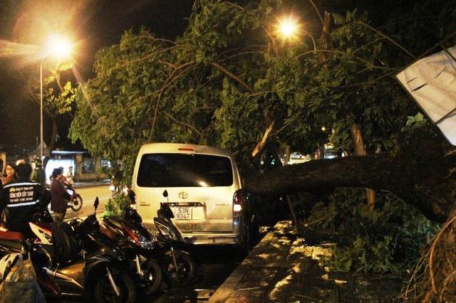 Cây đổ đè ô tô ở đường Đinh Tiên Hoàng