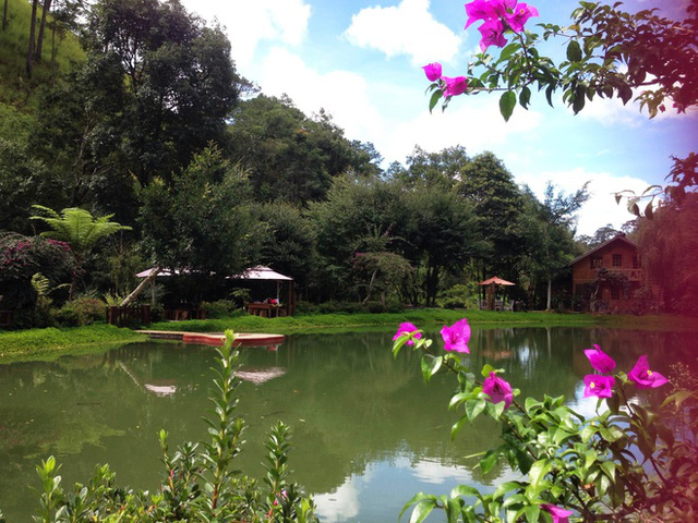 Ma rừng lữ quán (cách TP Đà Lạt hơn 20km) cũng là một điểm đến sinh thái với cảnh quan thơ mộng, yên bình. (Ảnh: VnExpress).