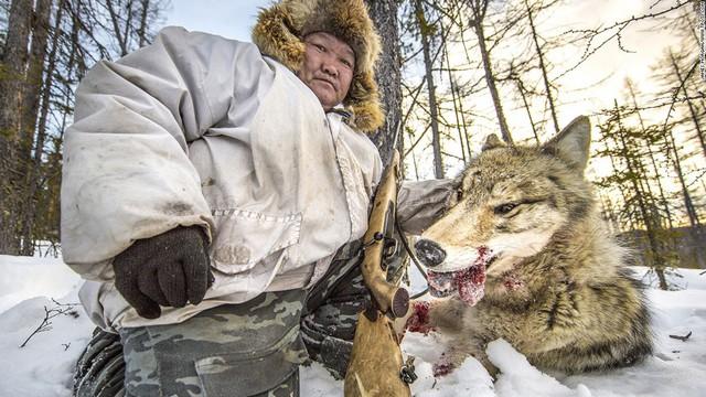 Ảnh chụp thợ săn chó sói ở Nga của nhiếp ảnh gia Brit James Morgan