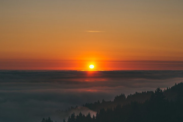 Núi Tamalpais, thành phố San Francisco, bang California (Mỹ) - Ảnh: Sothear Nuon.