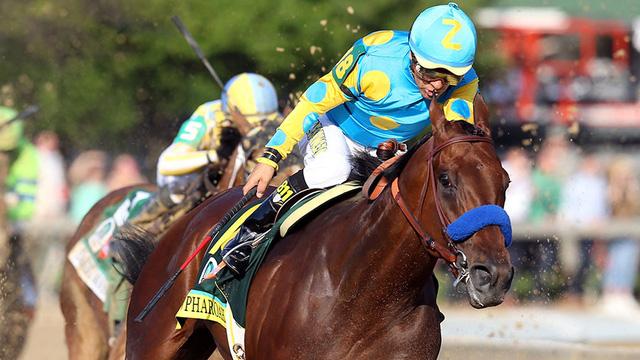 Chiến thắng tại trường đua Belmont đã giúp cú ngựa American Pharoah hoàn tất cú ăn 3 danh hiệu lớn Triple Crown