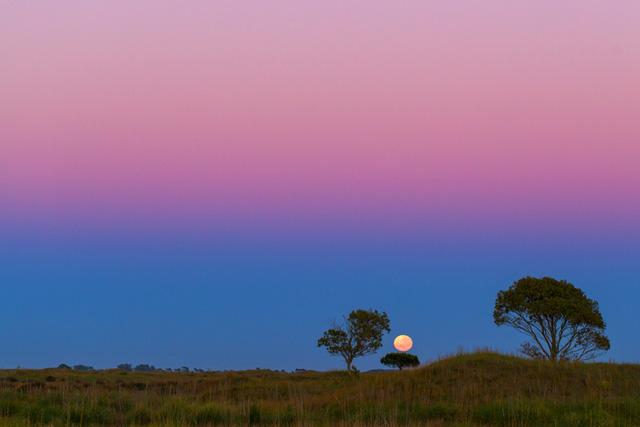 Mặc dù không chụp được hình sao chổi như mong muốn, nhiếp ảnh gia này đã bắt được hình ảnh Mặt Trăng tuyệt đẹp. Tác giả: Sebastián Guillermaz
