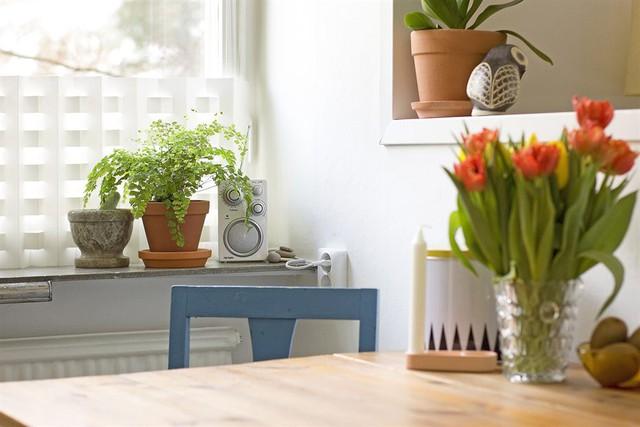 Chủ nhân rất biết cách tạo thêm không gian xanh cho ngôi nhà.